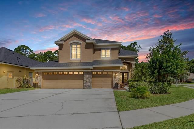 10474 Greendale Drive, Tampa, FL 33626 (MLS #T3311353) :: Cartwright Realty