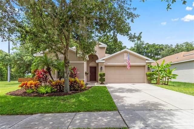1104 Emerald Hill Way, Valrico, FL 33594 (MLS #T3311370) :: Burwell Real Estate