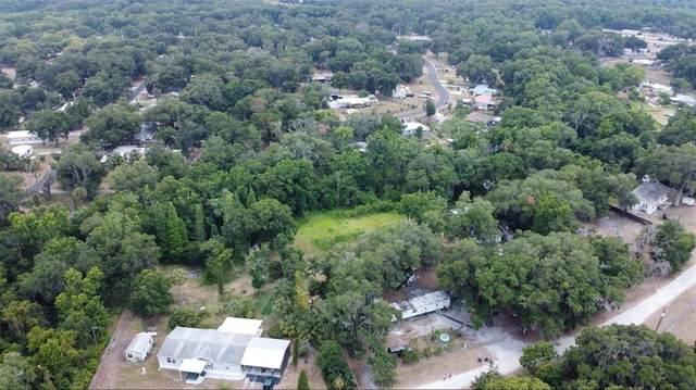 3430 Crest Lane, Mulberry, FL 33860 (MLS #T3311402) :: Everlane Realty
