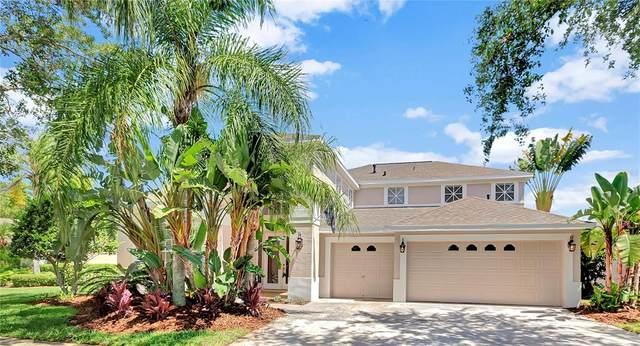 10208 Quails Landing Avenue, Tampa, FL 33647 (MLS #T3311415) :: Cartwright Realty