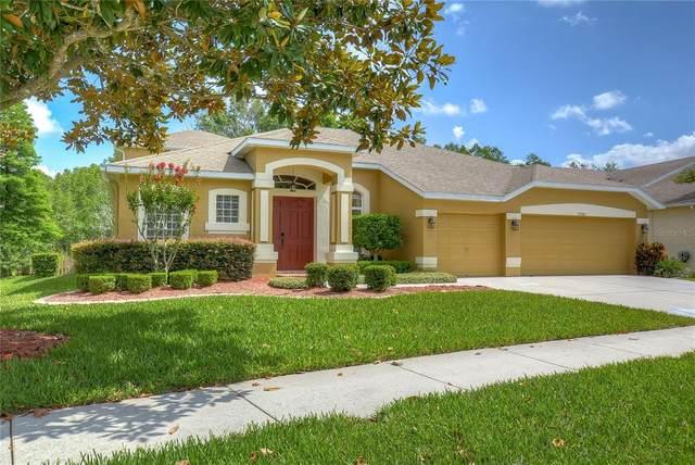 17743 Glenapp Drive, Land O Lakes, FL 34638 (MLS #T3311425) :: Vacasa Real Estate