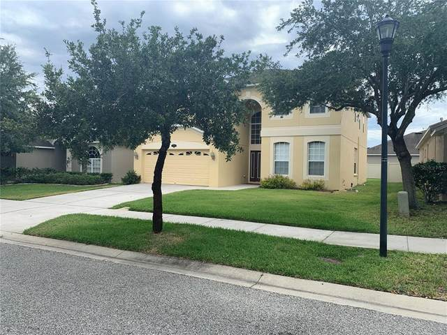 10903 Ancient Futures Drive, Tampa, FL 33647 (MLS #T3311443) :: Cartwright Realty