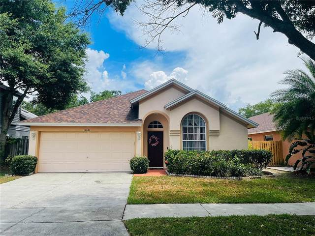 5641 Paddock Trail Drive, Tampa, FL 33624 (MLS #T3311487) :: Everlane Realty