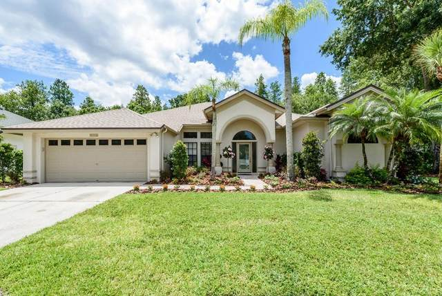 9116 Exposition Drive, Tampa, FL 33626 (MLS #T3311496) :: Cartwright Realty