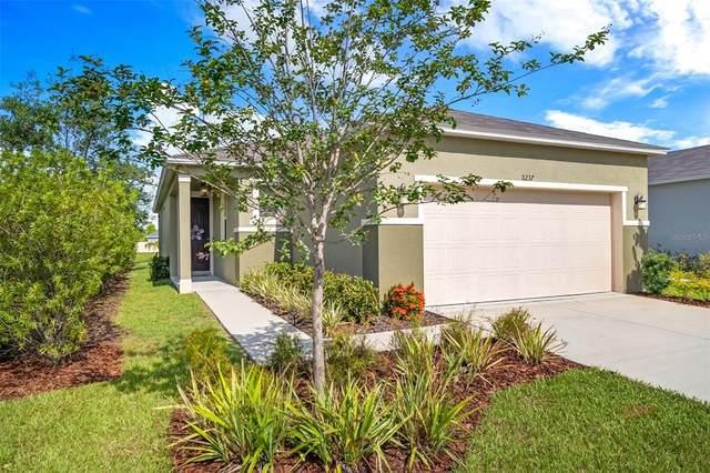 11237 Gold Compass Street, Gibsonton, FL 33534 (MLS #T3311520) :: Everlane Realty