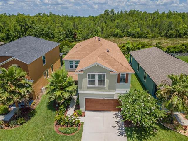 21370 Wistful Yearn Drive, Land O Lakes, FL 34637 (MLS #T3311537) :: Team Bohannon