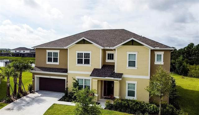 33646 Willow Point Court, Wesley Chapel, FL 33545 (MLS #T3311539) :: Team Bohannon