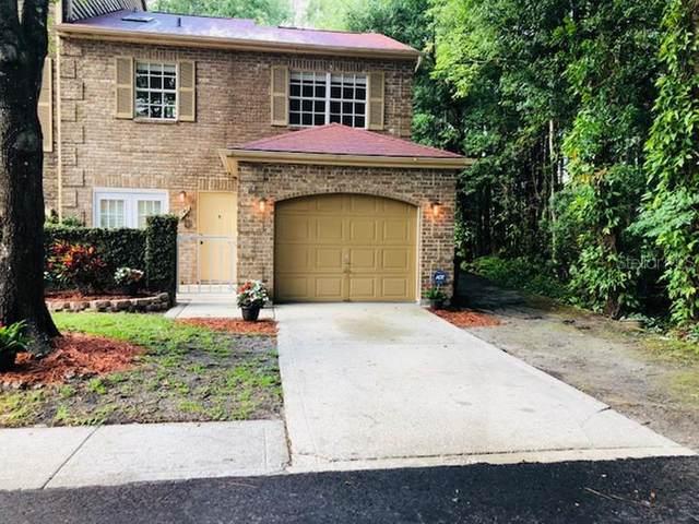 4141 Daventry Lane, Palm Harbor, FL 34685 (MLS #T3311545) :: Expert Advisors Group
