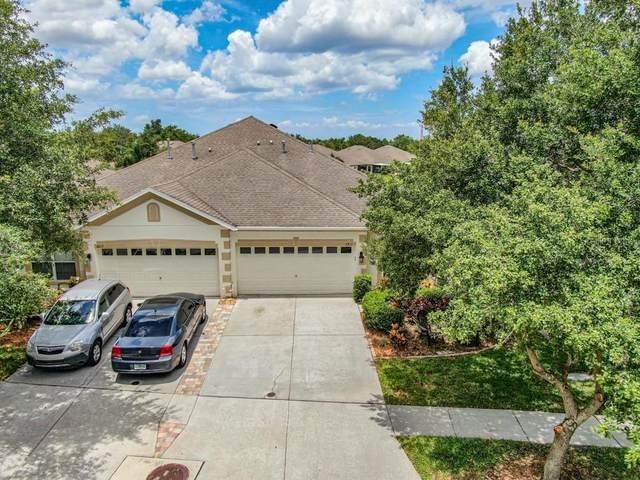 6811 Surrey Oak Drive, Apollo Beach, FL 33572 (MLS #T3311547) :: Your Florida House Team