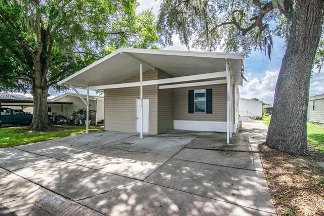 3115 Piney Bark Drive, Wesley Chapel, FL 33543 (MLS #T3311551) :: Zarghami Group