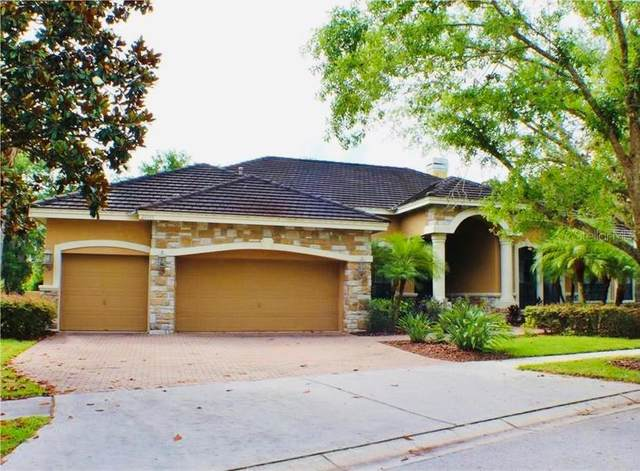 21315 Sky Vista Drive, Land O Lakes, FL 34637 (MLS #T3311556) :: Zarghami Group