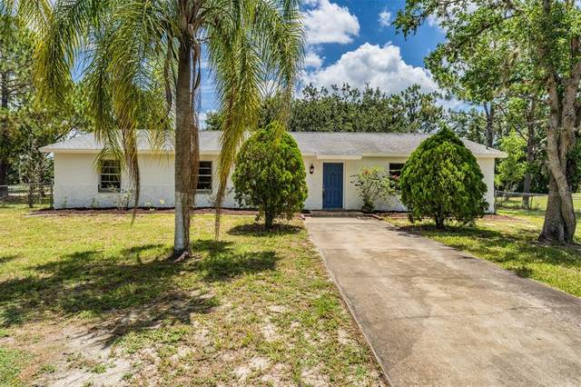 3520 Haystack Road, Wesley Chapel, FL 33543 (MLS #T3311578) :: BuySellLiveFlorida.com