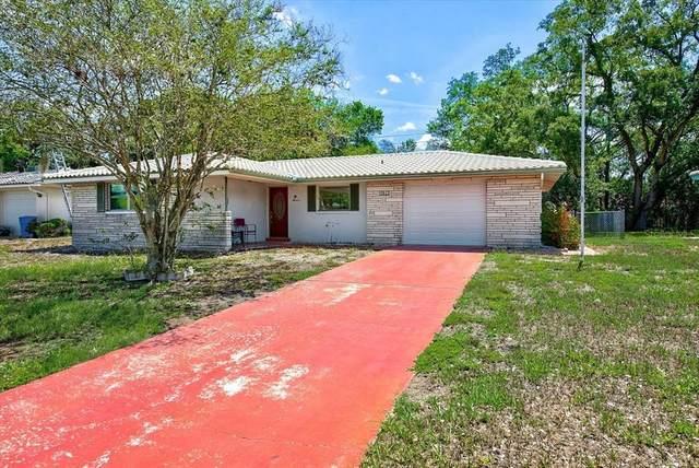 10622 Laburnum Drive, Port Richey, FL 34668 (MLS #T3311581) :: BuySellLiveFlorida.com