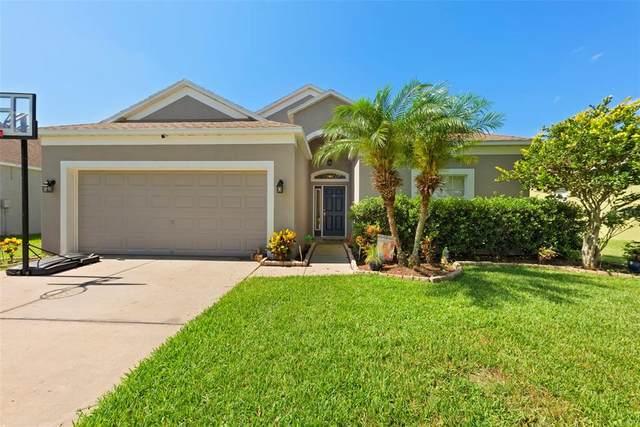 3618 Trapnell Ridge Drive, Plant City, FL 33567 (MLS #T3311615) :: Zarghami Group