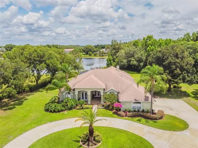 17729 Lake Key Drive, Odessa, FL 33556 (MLS #T3311634) :: RE/MAX LEGACY