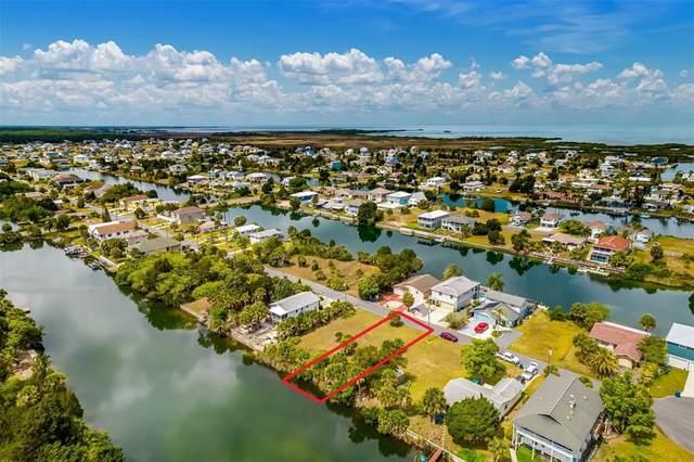 3386 Holly Springs Drive, Hernando Beach, FL 34607 (MLS #T3311640) :: Frankenstein Home Team