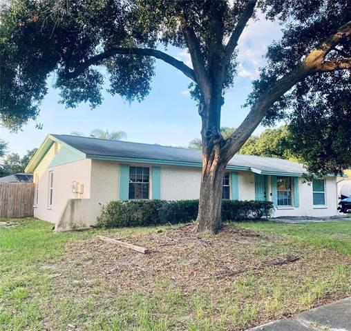 2216 Selkirk Street, Valrico, FL 33594 (MLS #T3311680) :: Everlane Realty
