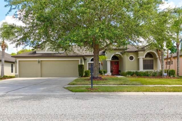 15140 Princewood Lane, Land O Lakes, FL 34638 (MLS #T3311685) :: BuySellLiveFlorida.com