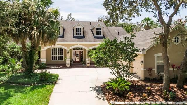 6317 Soratrace Street, Lithia, FL 33547 (MLS #T3311694) :: The Robertson Real Estate Group