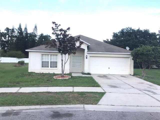 3436 Trapnell Ridge Drive, Plant City, FL 33567 (MLS #T3311744) :: Everlane Realty