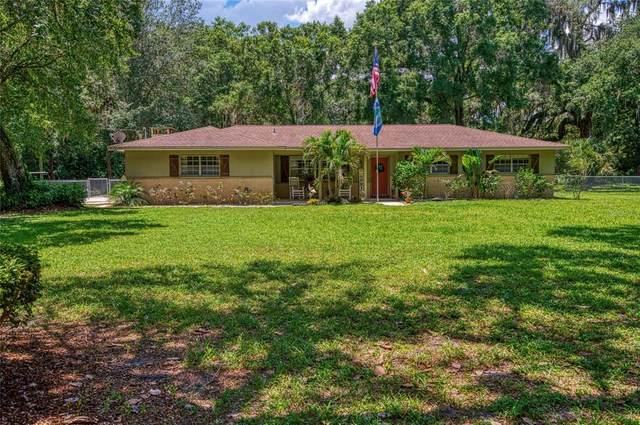 212 N Smokey Mountain Road, Seffner, FL 33584 (MLS #T3311749) :: The Robertson Real Estate Group