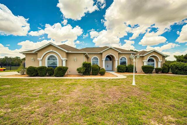 11370 S Brightstar Avenue, Floral City, FL 34436 (#T3311751) :: Caine Luxury Team