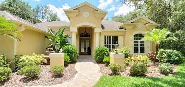 17815 Mission Oak Drive, Lithia, FL 33547 (MLS #T3311763) :: Dalton Wade Real Estate Group