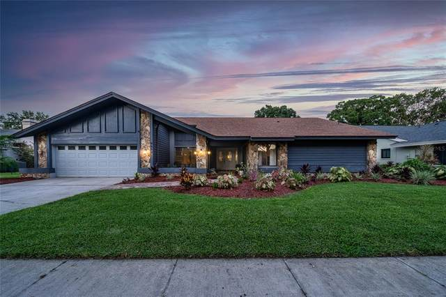 4654 Westford Circle, Tampa, FL 33618 (MLS #T3311792) :: Delgado Home Team at Keller Williams