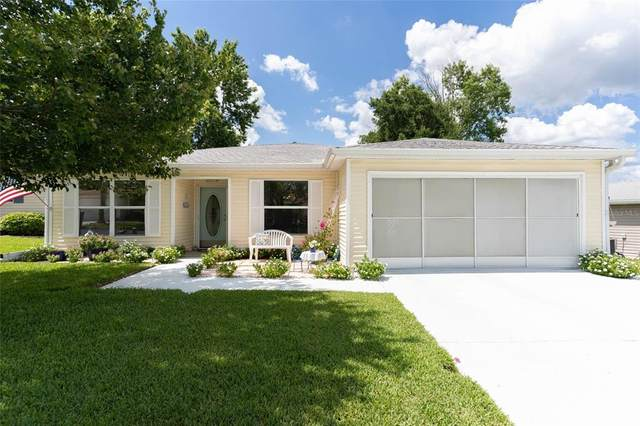 29217 Princeville Drive, San Antonio, FL 33576 (MLS #T3311803) :: Everlane Realty