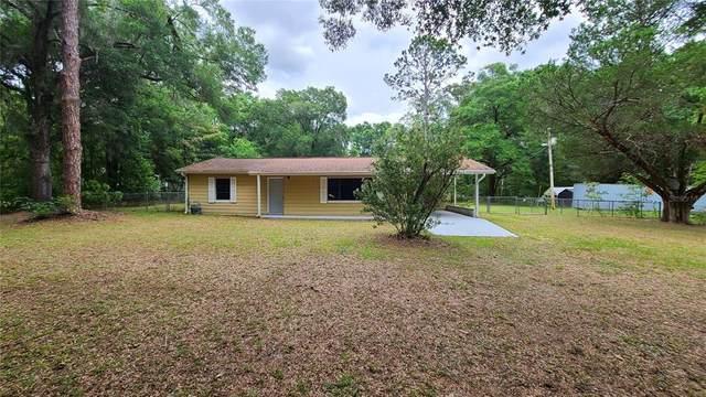 8901 NE 20TH Terrace, Anthony, FL 32617 (MLS #T3311816) :: Zarghami Group