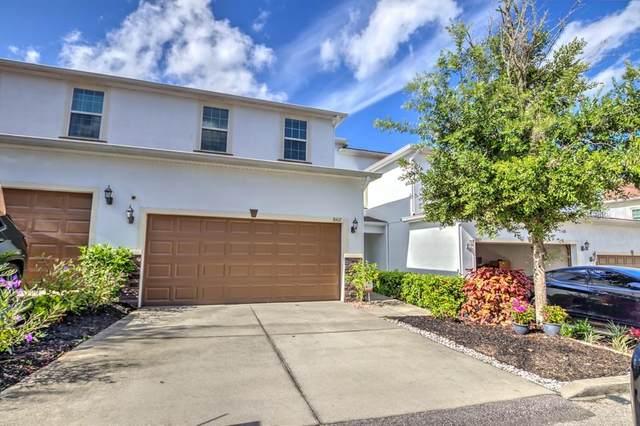8407 N Costa Blanca Court, Temple Terrace, FL 33637 (MLS #T3311829) :: Everlane Realty