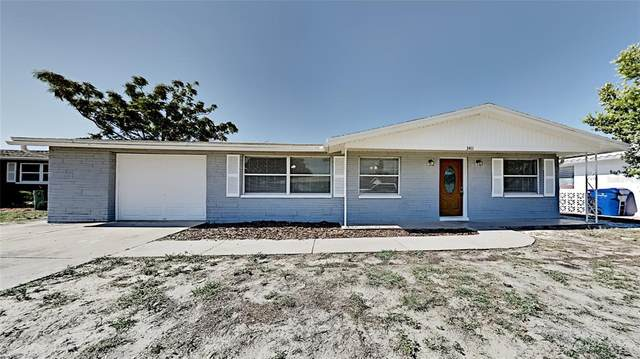 3411 Umber Road, Holiday, FL 34691 (MLS #T3311835) :: Rabell Realty Group