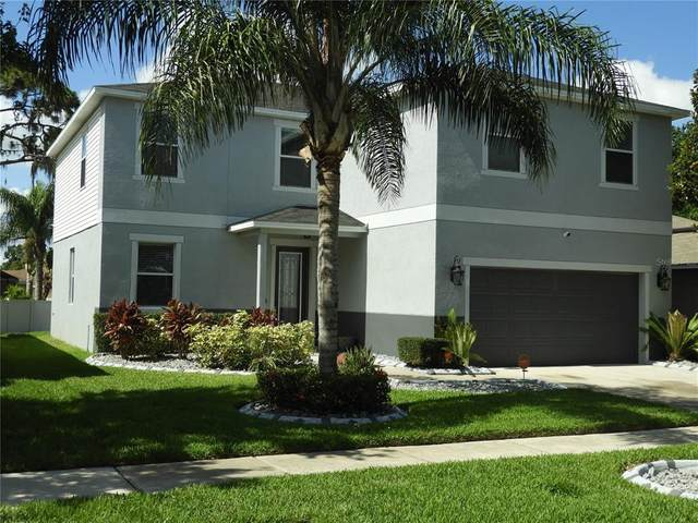 11165 Running Pine Drive, Riverview, FL 33569 (MLS #T3311848) :: Dalton Wade Real Estate Group