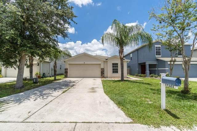 17343 Mint Leaf Lane, Land O Lakes, FL 34638 (MLS #T3311875) :: Cartwright Realty