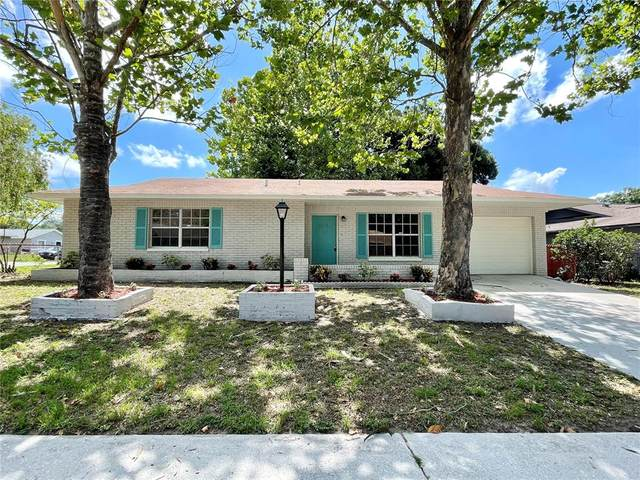 1234 Oak Valley Drive, Seffner, FL 33584 (MLS #T3311889) :: Zarghami Group