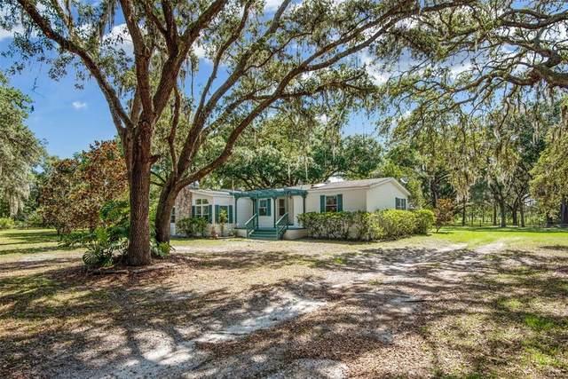 5602 Ike Smith Road, Plant City, FL 33565 (MLS #T3311911) :: Zarghami Group