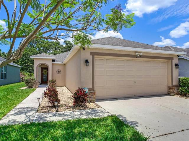 7137 Forest Mere Drive, Riverview, FL 33578 (MLS #T3311912) :: Dalton Wade Real Estate Group