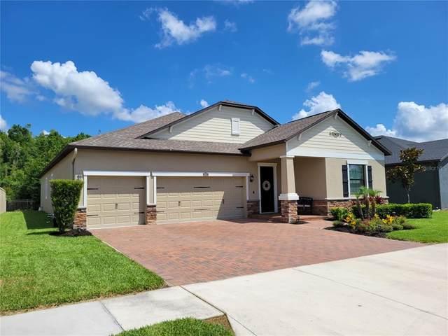 31427 Driscoll Drive, Wesley Chapel, FL 33543 (MLS #T3311926) :: BuySellLiveFlorida.com