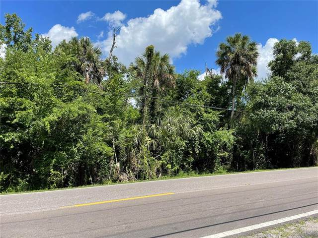 S 78 TH Street, Riverview, FL 33578 (MLS #T3311959) :: The Hustle and Heart Group