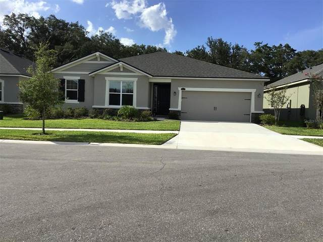 11406 Blue Woods Dr, Riverview, FL 33569 (MLS #T3311962) :: The Home Solutions Team | Keller Williams Realty New Tampa