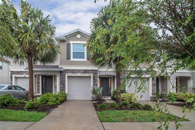 10411 Red Carpet Court, Riverview, FL 33578 (MLS #T3312009) :: Burwell Real Estate