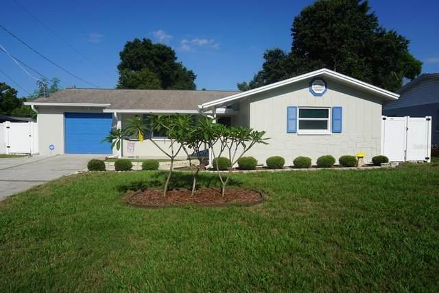 308 Debra Drive, Brandon, FL 33510 (MLS #T3312042) :: Delgado Home Team at Keller Williams