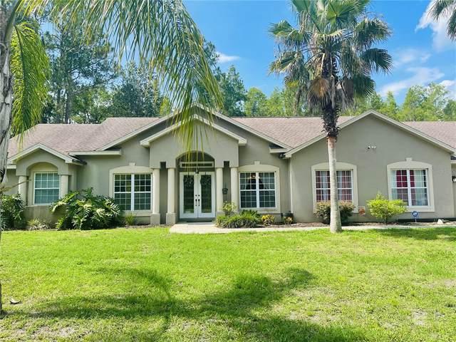 26318 Lawrence Avenue, Wesley Chapel, FL 33544 (MLS #T3312059) :: Delgado Home Team at Keller Williams