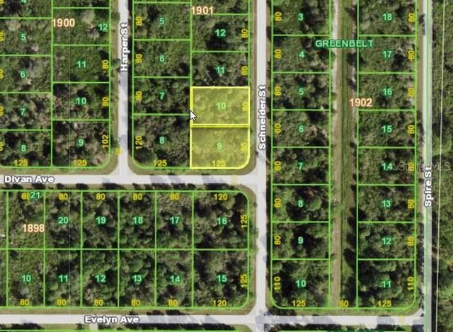 4395 Schneider Street, Port Charlotte, FL 33981 (MLS #T3312070) :: The Robertson Real Estate Group