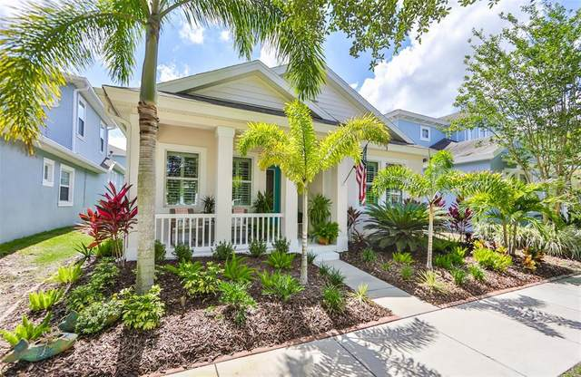 507 Winterside Drive, Apollo Beach, FL 33572 (MLS #T3312074) :: CENTURY 21 OneBlue