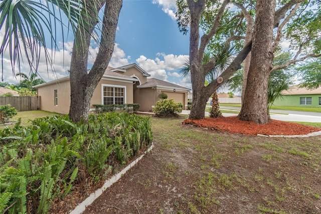 814 Coade Stone Drive, Seffner, FL 33584 (MLS #T3312082) :: Zarghami Group