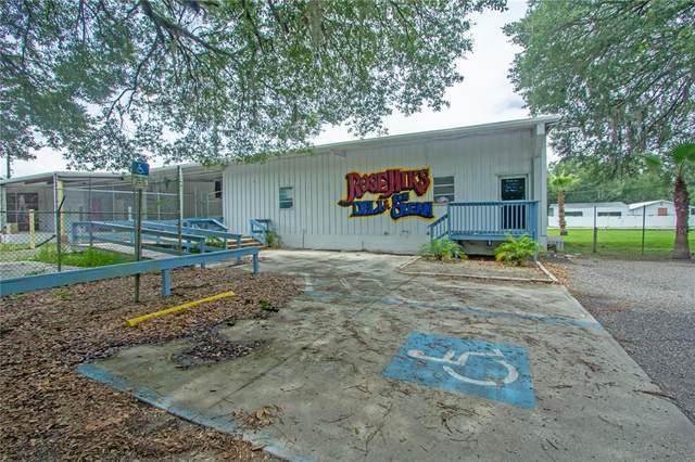 37202 Chancey Road, Zephyrhills, FL 33541 (MLS #T3312089) :: Armel Real Estate