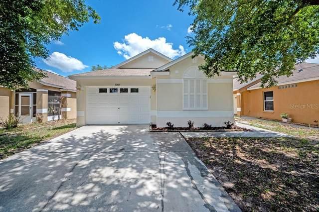 10401 Lakeside Vista Drive, Riverview, FL 33569 (MLS #T3312094) :: Dalton Wade Real Estate Group