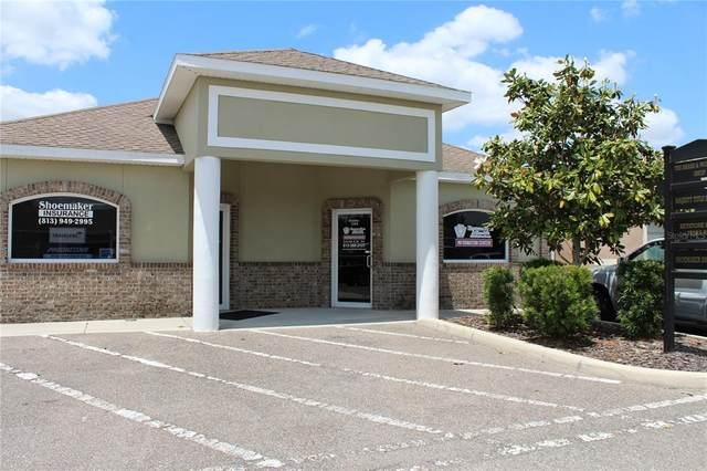 24140 State Road 54 #104, Lutz, FL 33559 (MLS #T3312103) :: Team Bohannon