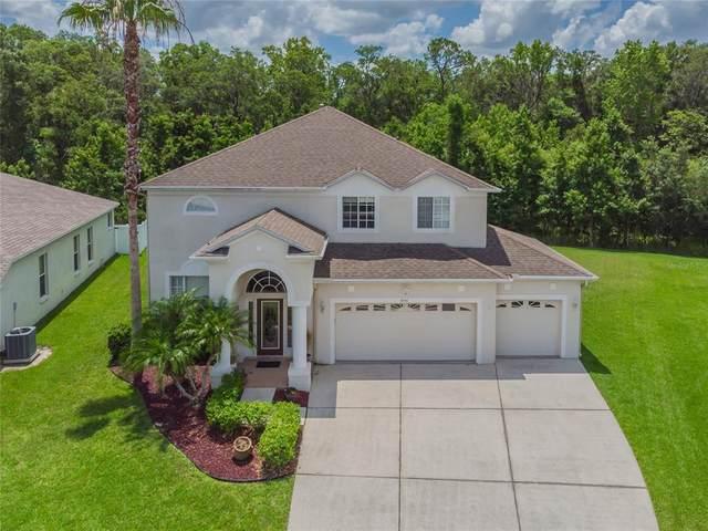 4546 Roslyn Court, Land O Lakes, FL 34639 (MLS #T3312106) :: Delgado Home Team at Keller Williams